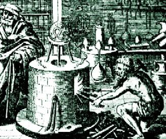 distilling_tripus_aureus_lucas_jennis_16